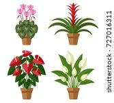 vector set of indoor blooming... | Shutterstock .eps vector #727016311