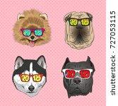 dog wearing sunglasses  year...   Shutterstock .eps vector #727053115