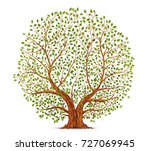 old tree vector illustration | Shutterstock .eps vector #727069945