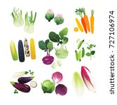 clip art vegetables set with... | Shutterstock .eps vector #727106974