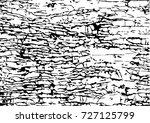 tree bark textures set isolated ... | Shutterstock .eps vector #727125799