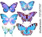 beautiful blue butterfly... | Shutterstock . vector #727157707
