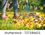 Gardener woman raking up autumn ...