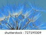 blue abstract dandelion seeds... | Shutterstock . vector #727195309