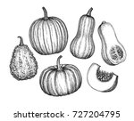 pumpkins  butternut squash and... | Shutterstock .eps vector #727204795