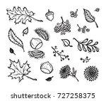 Vector Food. Autumn Harvest...