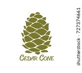 cedar cone  sketch for your... | Shutterstock .eps vector #727374661