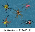 insect spider nature cartoon... | Shutterstock .eps vector #727405111