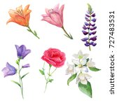 watercolor set colorful flowers.... | Shutterstock . vector #727483531