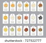 seeds of seasonings on paper...   Shutterstock .eps vector #727522777