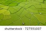 aerial view of the green and... | Shutterstock . vector #727551037
