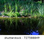 swimming garden pond  natural... | Shutterstock . vector #727588849