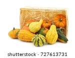 colorful decorative pumpkins... | Shutterstock . vector #727613731
