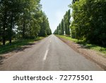 Country road beetwen trees - stock photo