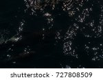 encounter with long finned... | Shutterstock . vector #727808509