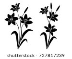 silhouettes of lily flower ... | Shutterstock .eps vector #727817239