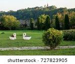 green garden alley with trees.... | Shutterstock . vector #727823905