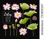 set of lotus flowers and leaves | Shutterstock .eps vector #727853167