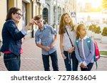 portrait of female teacher with ... | Shutterstock . vector #727863604