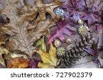 Colorful Fall Leafs Come...