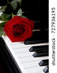 red rose on piano     Shutterstock . vector #727936195