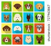 doberman  dalmatian  dachshund  ... | Shutterstock .eps vector #727963867