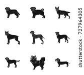sheepdog  dachshund  bernard ... | Shutterstock .eps vector #727964305