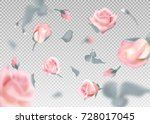 pink rose falling flowers and... | Shutterstock .eps vector #728017045