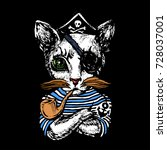 cat the pirate hand drawn... | Shutterstock .eps vector #728037001