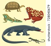 reptile and amphibian colorful... | Shutterstock .eps vector #728040679