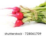 fresh radish | Shutterstock . vector #728061709