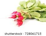 fresh radish | Shutterstock . vector #728061715