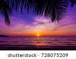 palm trees silhouette at sunset.... | Shutterstock . vector #728075209