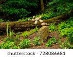 a small artistic stone...   Shutterstock . vector #728086681