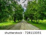 asphalt road with green tree in ... | Shutterstock . vector #728113351