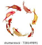 chinese traditional... | Shutterstock . vector #728149891