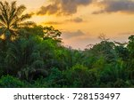 beautiful lush green west... | Shutterstock . vector #728153497