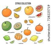 set of vector illustration of... | Shutterstock .eps vector #728225719