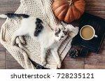 cute kitten relaxing on warm... | Shutterstock . vector #728235121