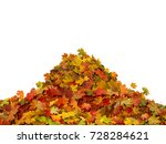 pile of autumn maple colored... | Shutterstock . vector #728284621