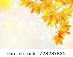 autumn landscape with bright... | Shutterstock . vector #728289835