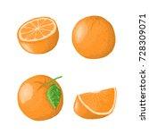 set of vector orange. whole ... | Shutterstock .eps vector #728309071