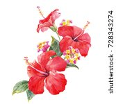 watercolor tropical composition ... | Shutterstock . vector #728343274