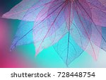 Stock photo macro leaves background texture blue turquoise pink color transparent skeleton leaves bright 728448754