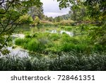 calm river in the summer... | Shutterstock . vector #728461351