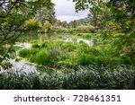 calm river in the summer...   Shutterstock . vector #728461351