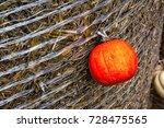 Small photo of Pumpkin Orange Attached Haybale Closeup Background Texture Decoration Autumn Fall Single