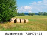 sheaves of hay in the forest... | Shutterstock . vector #728479435