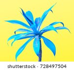 aloe. art gallery fashion... | Shutterstock . vector #728497504