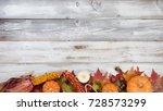 autumn foliage with pumpkins ... | Shutterstock . vector #728573299
